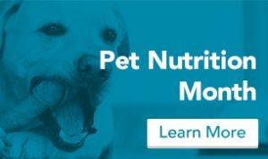 blog_nutrition_blue